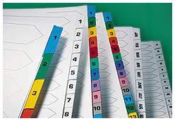 Karton-Register mit Mylar-Verstärkung